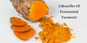 Benefits Of Fermented Turmeric - Graphic