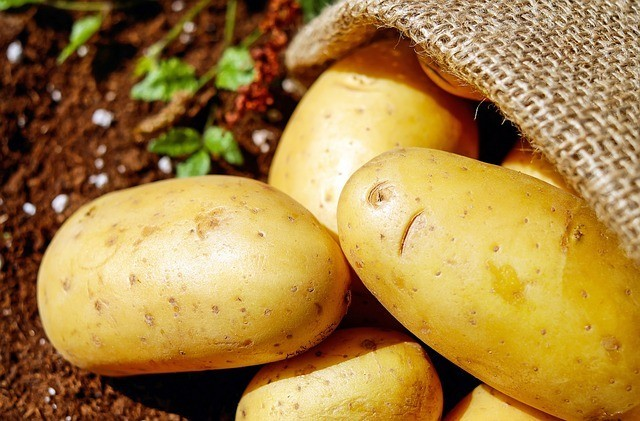 Improve Your Digestion With Resistant Starch