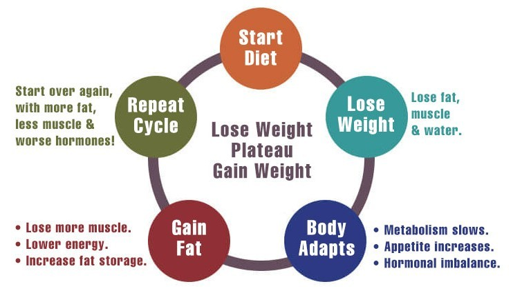 yo yo dieting graphic
