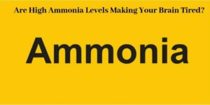 High Ammonia Levels - The Word Ammonia