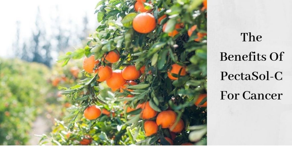 The Benefits Of PectaSol-C For Cancer - Oranges