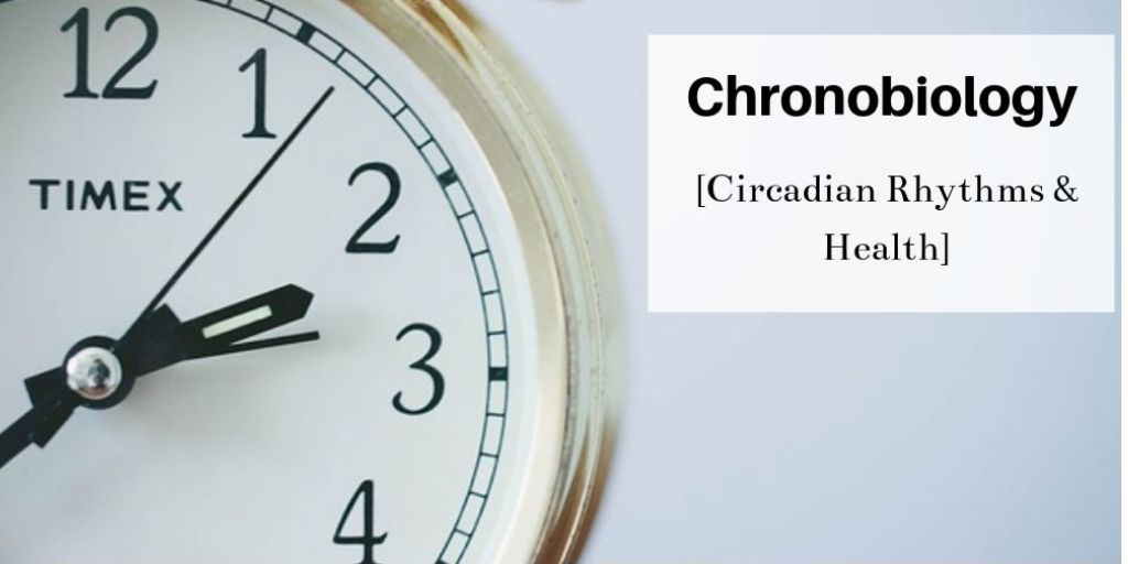 What Is Chronobiology - Hands On A Clock