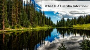 What Is A Giardia Infection - Beautiful Lake