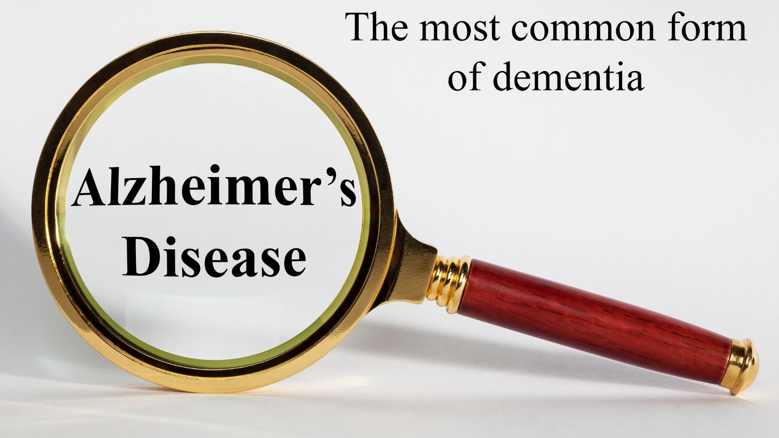 What Are The 7 Stages Of Alzheimer's Disease - Magnifying Glass
