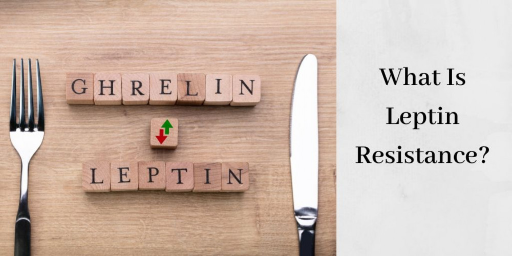 what is leptin resistance graphic